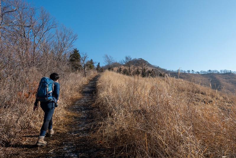 杓子山の登山道