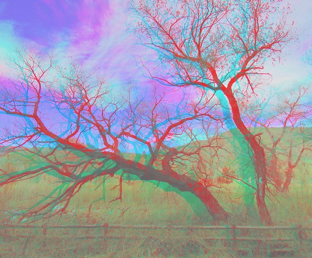 IMG_8966gg8-Anaglyph Photo/3D