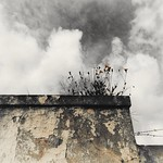 #53semanasfotográficas  #ano2020  #5b  ...