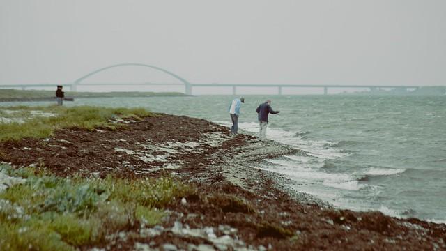 Fehmarnsund mit Brücke | 8. September 2013 | Fehmarn - Schleswig-Holstein - Deutschland