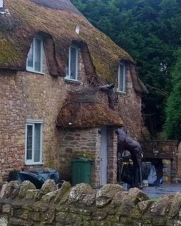 118 of Year 6 - Giraffe cottage