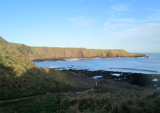 Cliff View  from Dunnottar path