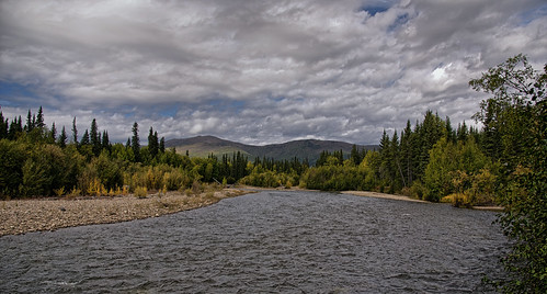 The Chena River and a Setting of Forest and Mountains (Chena River State Recreation Area)