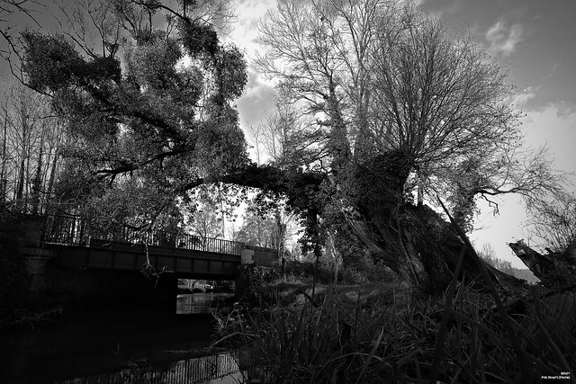 L'eau coule sous les ponts.