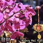HongKong 香港 (200128)n