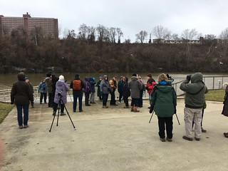 January 2020 Field Trip Birders birding photo by Michelle Brosius