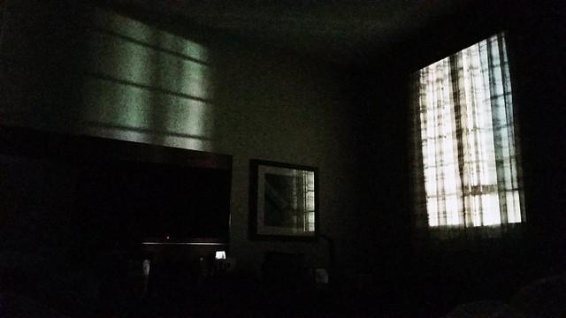 Hotel Shadows