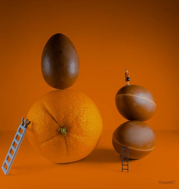 Orange VS Chocolate