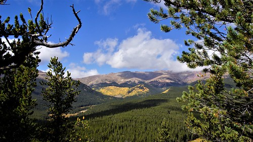 boreas pass nf rd 404 pike national forest colorado