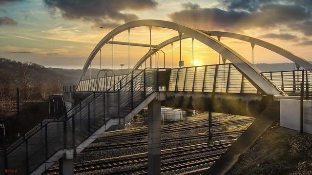 #Bridge - 8029