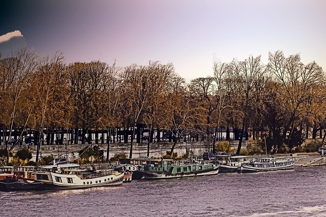 River Boats  - Seine, Paris