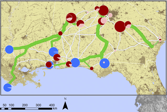 This map from the SimCCS software developed by Los Alamos National Laboratory shows potential carbon sources (red dots), sinks (blue dots), and proposed optimal pipelines (green).