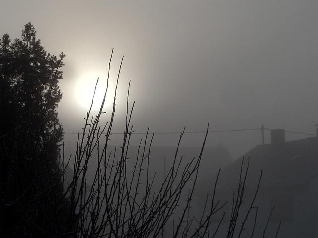 Landschaft im tiefen Nebel, am Himmel eine fahle Sonne