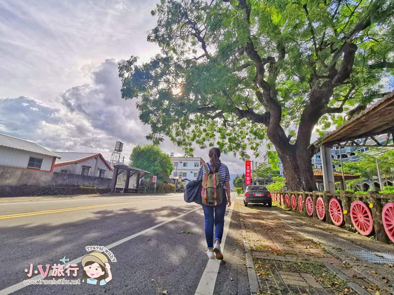 【 台東 鹿野行程 】龍田村一日遊 │ 採果、日本神社 、精品咖啡 單車小旅行全攻略!