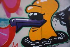 Seagull Orange Graffiti