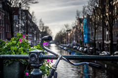 Bikes, flowers and channels in Amsterdam