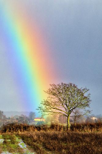 Hallow Rainbow