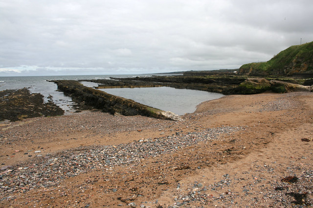 The coast at St Andrews