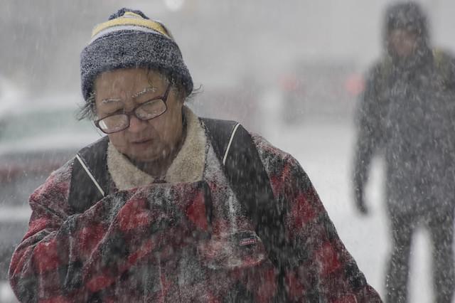 Snowy Eyebrows: Yonge Street, 2020 (IMGP0841A (3))