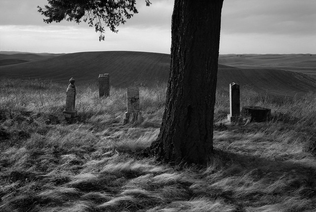 In a Cemetery, Eastern Washington