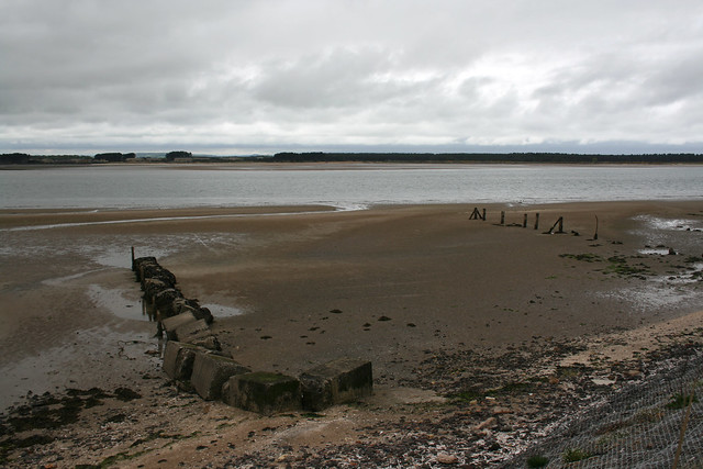 The coast beside St Andrews Links