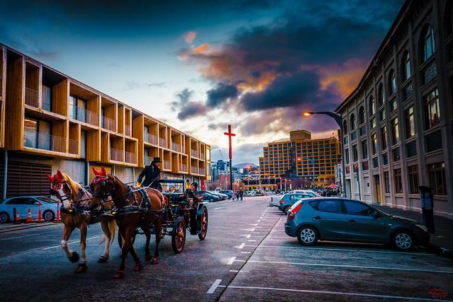 Hobart Harbour Horse cart Australia Sunset