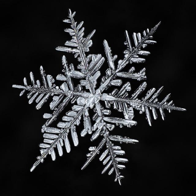 Snowflake 881