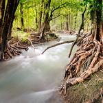Rapid creek pano