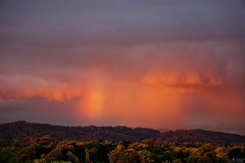 mindblowing sky clouds cloudporn sunrise sunset livingroom silhouette landscape forrest rainbow regenbogen arcenciel a6000 ilce6000 sel55210 lewelsch lewelschphoto swissphotographers