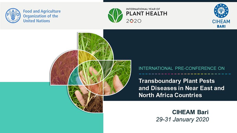 International Pre-Conference on Transboundary Plant Pests and Diseases in Near East and  North Africa Countries
