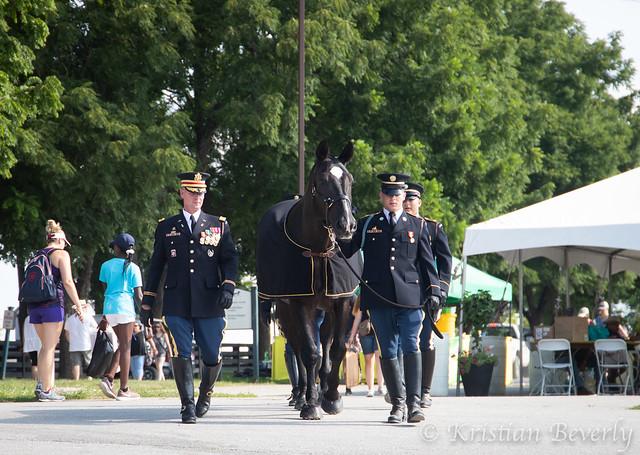 Service-Horse-Breyerfest-2019
