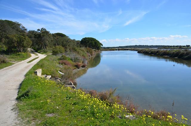 Sado Estuary, Setubal, Portugal