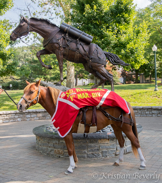 sergeant-reckless-with-statue-Breyerfest-2019