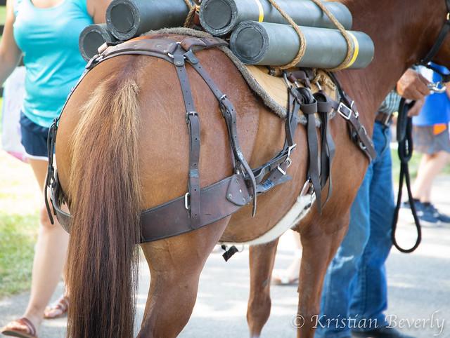 military-horse-tack-Breyerfest-2019