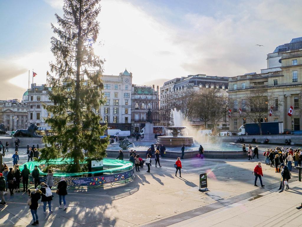 Arbol de Navidad en Trafalgar Square en Londres