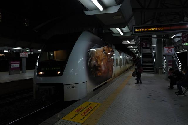 DSCF4315