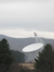 Radio telescope through the trees