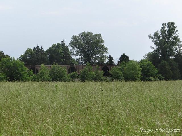 14-Bristoe Station Battlefield site 1862 battle