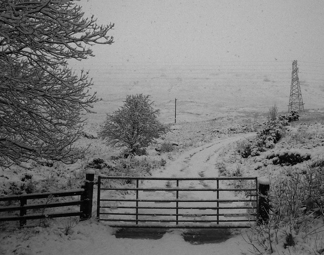 Snow at Crianlarich.  (IMG_4577)