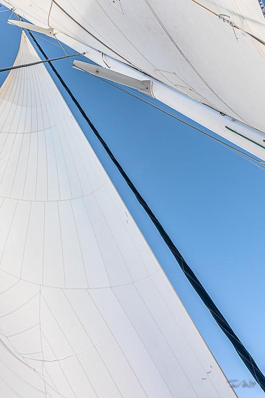 Fan7  - François Leroy | Guadeloupe - Catamaran-3