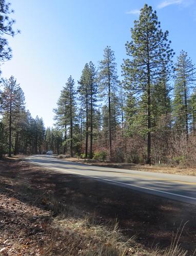 california ca landscapes shastacounty northamerica unitedstates us sierranevadamountains