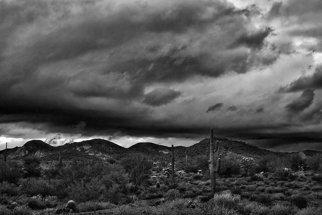 Sonoran Stormfront