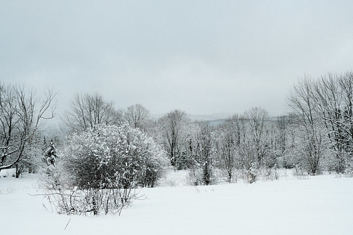 lamoille county vermont highway 118 winter wonderland trees mountains landscape cold brr windy white vt skiing road dusting whitestuff fujifilm fuji xpro2 xf23mmf2 barren desolate nature