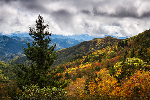 blueridgeparkway fall nc northcarolina mountains outdoors autumn appalachia wnc appalachianmountains asheville cherokee nikon d850 fallcolors autumncolors blueridgemountains scenic landscape nature