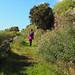 GR route La Palma
