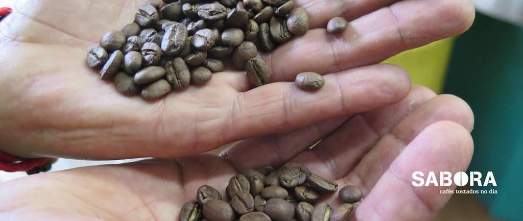 Grans de diferentes tipos de cafés dunha mesma facenda
