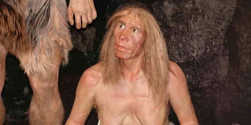 les-Néandertaliens-ont-jamais-vécu-en-afrique-mais-leurs-gènes-y-sont-quand-même-arrivés