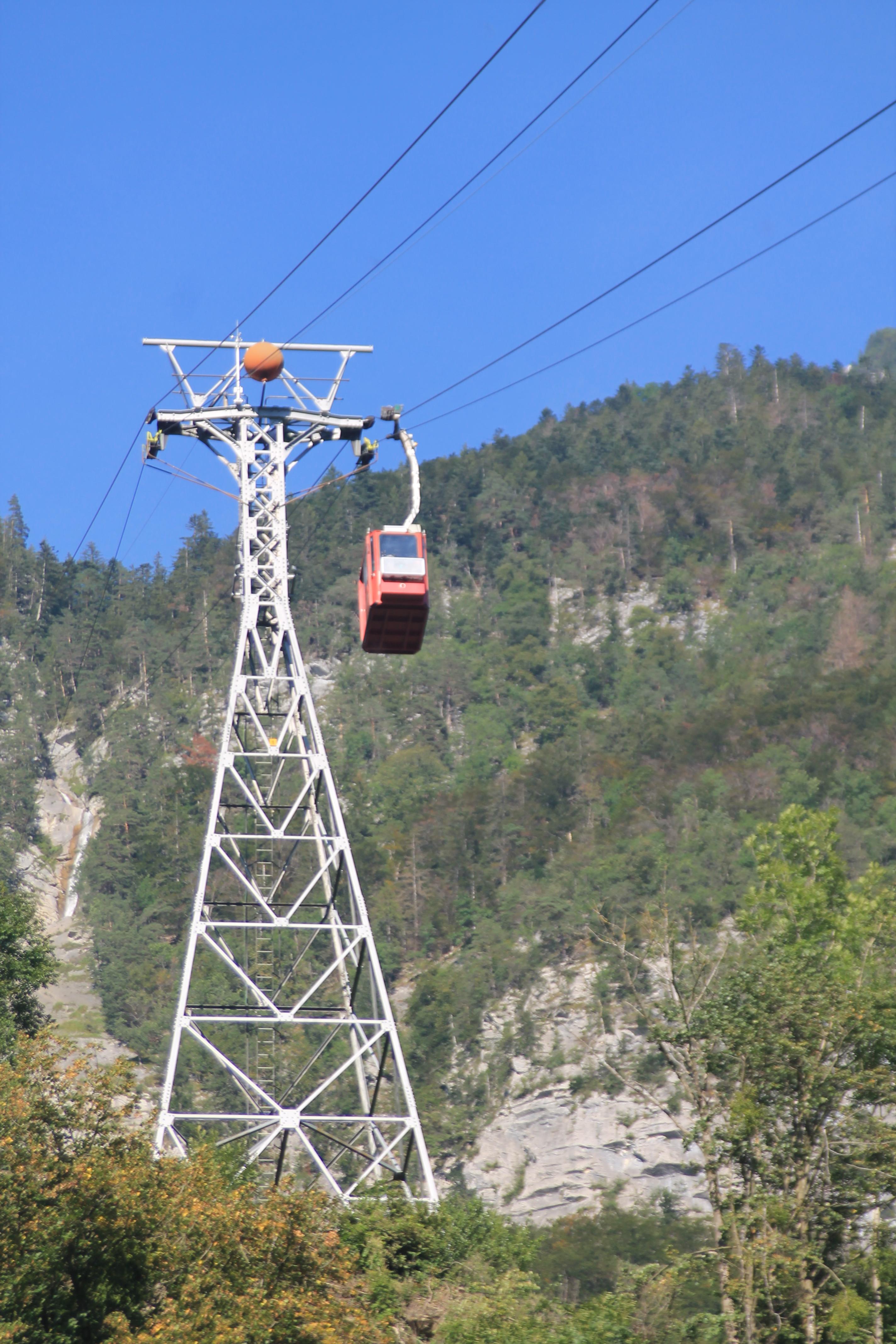 Alp Palfries
