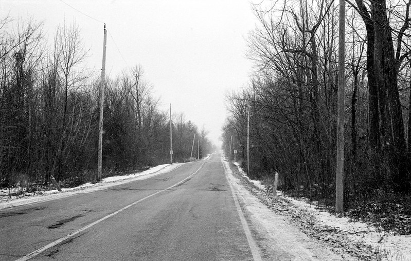 Mississauga Road in the Flurries_
