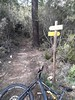A la descente de l'ancien chemin de Luviu : arrivée à la D168a